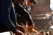 В Райымбекском районе получен рекордный урожай картофеля