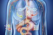 Организм человека способен сообщать о нарушении кислотно-щелочного баланса