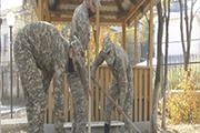 Атырауские военнослужащие навестили  подшефный дом престарелых