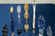 Предприятия Алматинской области стали лауреатами Президентской премии «Алтын сапа»