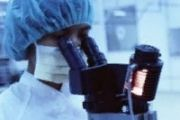 Найден вирус, убивающий раковые клетки